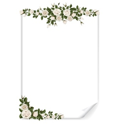 white vertical paper sheet decorated roses vector image vector image