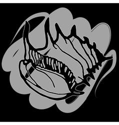 Doodles seashells on a black background vector image
