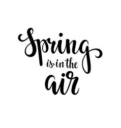 Spring is in the air hand drawn calligraphy and vector