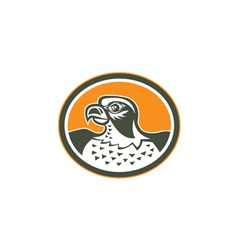 Falcon head side oval retro vector