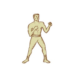 Vintage boxer pose etching vector