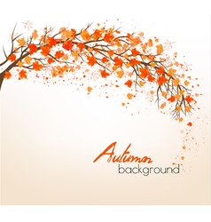 Beautiful autumn nature background with trees vector