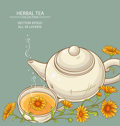 Calendula tea background vector