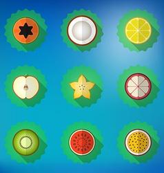 Fruit Flat Icon Set Include apple lemon papaya vector image
