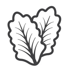 Lettuce line icon vegetable and salad leaf vector