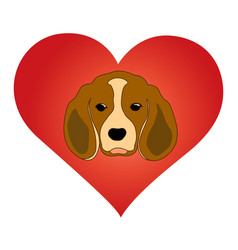 i love dogs vector image