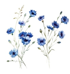 Blue flowers 8 vector image