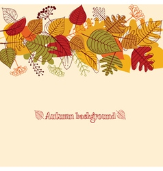 Background from autumn leaves vector image vector image