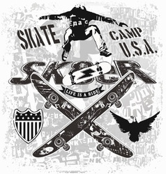 usa skate camp vector image