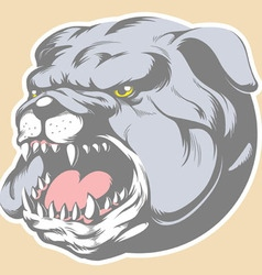 Bull Dog Head Cartoon vector image