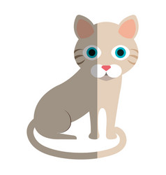 Cat cute pet icon vector