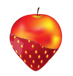Fruit apple strawberry modify gmo vector
