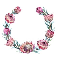 Watercolor tropical protea wreath vector image