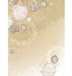 Seashells on the sand vector