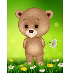 Little bear in summer season background vector image vector image