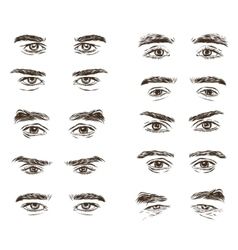 Part of the male person s eyes and eyebrows vector
