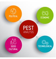pest diagram schema vector image