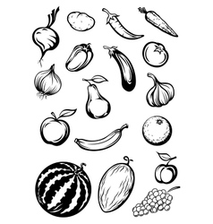 Variety sketches of fruits and vegetables vector image vector image