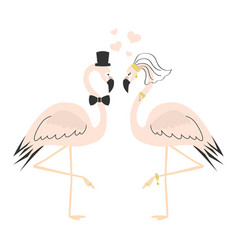 Beautiful cute pink flamingo couple wedding card vector