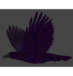 Flying raven with high details vector
