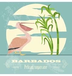 Barbados national symbols pelican sugarcane retro vector