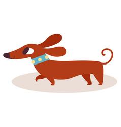 Cute brown cartoon dachshund in a blue collar vector