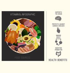 Vitamin b6 foods vector