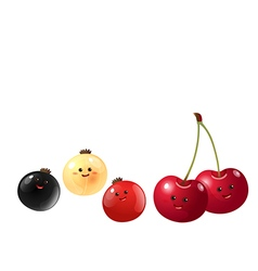 cute fruits cherry and currants vector image