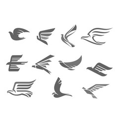 Icons of flying birds and wings vector