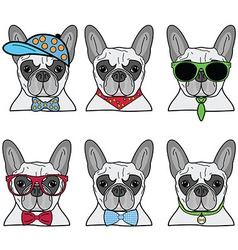 French bulldog set of 6 icons vector