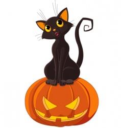 Halloween cat on pumpkin vector