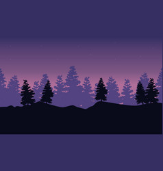 Silhouette of spruce scenery at night vector