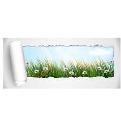 Fresh spring grass with flowers vector