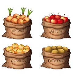 Sacks of fruits and crops vector