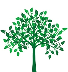 a green tree vector image