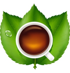 Cup with tea and green leaves vector