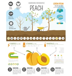 Gardening work farming infographic peach graphic vector