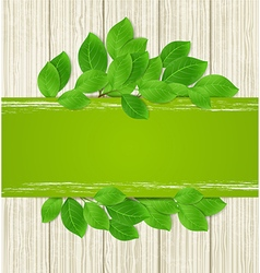 Green horizontal banner with leaves vector