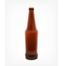 Beer in a bottle vector image