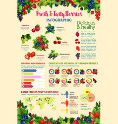 infographics template for fresh berries vector image vector image