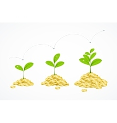 Money tree concept vector