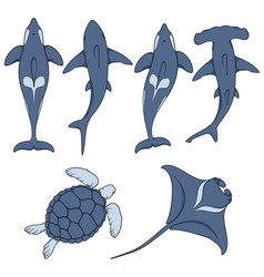 Set of images with marine animals vector