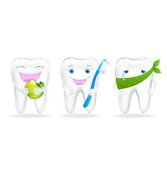 Collection Of Teeth vector image