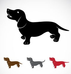 Dog dachshund vector