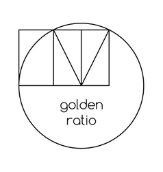 Golden ratio line graphic on white background vector