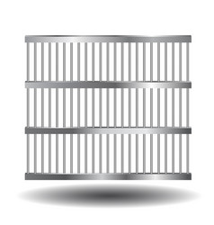 prison bars of steel vector image