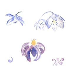 Watercolor violet flowers vector image vector image
