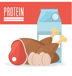 Protein product ingredient food vector
