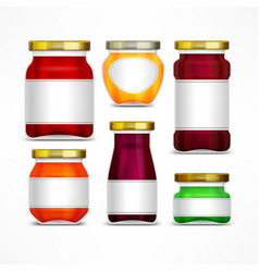 fruit jam jars with label vector image vector image