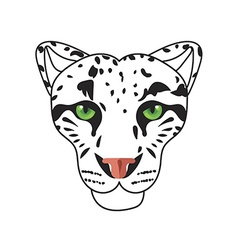 Wild cat irbis leopard snow bars in vector
